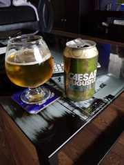 Williams Bros Caesar Augustus LAger IPA hybrid